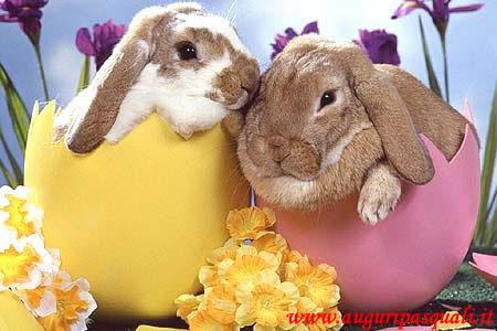 Immagine Teneri Conigli Pasqua