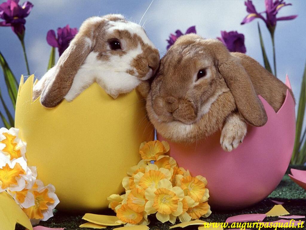 Sfondo Pasqua Colorato